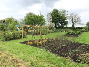Two Small Allotments Available from March 2021